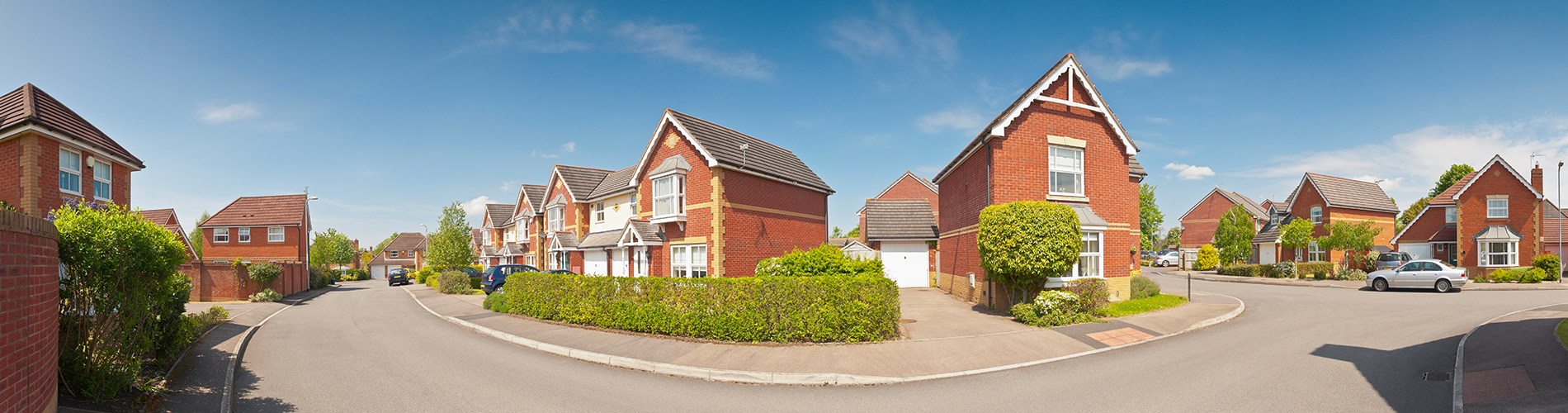 Callback Content Intro Background